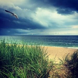 Strand new england storm 2014